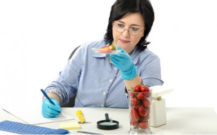 Nous déterminons les caractéristiques sensorielles et moléculaires de vos aliments